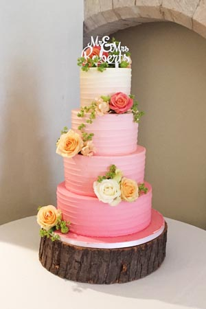 Wedding Cakes - Pink Ombre Buttercream Spin