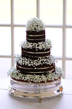 Wedding Cakes - Naked Cake with Gypsophila