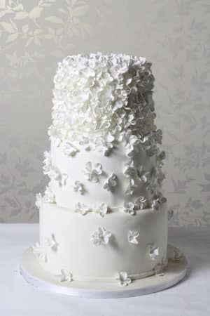 Wedding Cakes -  Butterfly Blossom Cascade